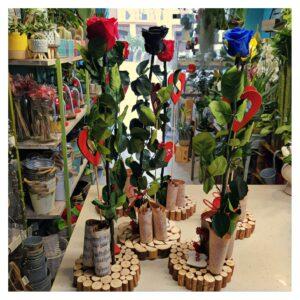 En este base de madera esta presentada tu rosa de San Valentin en una forma original.
