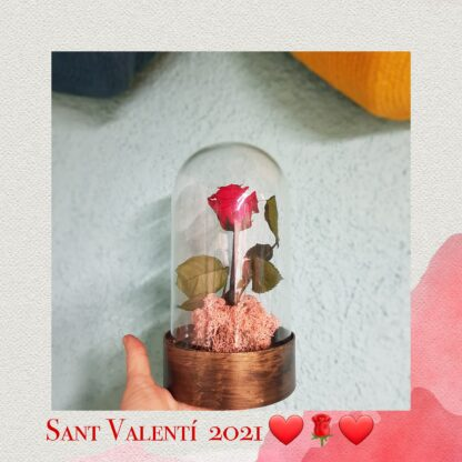 Cupule de cristal con rosa eterna de color roja.