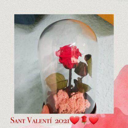 Cupula de cristal con base de metal. Con rosa eterna de color rojo
